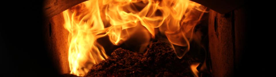 Zgorevanje biomase